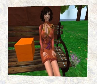 Karys_orange_box_store-orange_box_pets