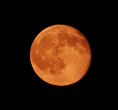 rl_moon