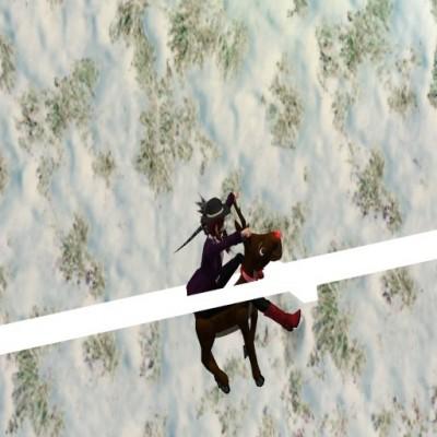 reindeer_racing_05