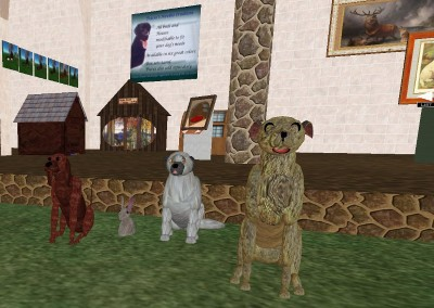 dogs-_old_bunnie_2007